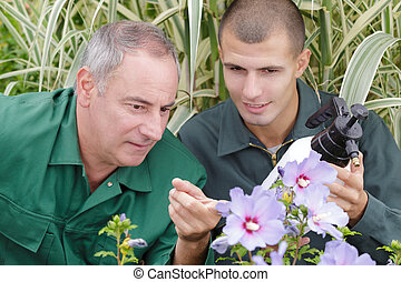 close up of spring garden maintenance team