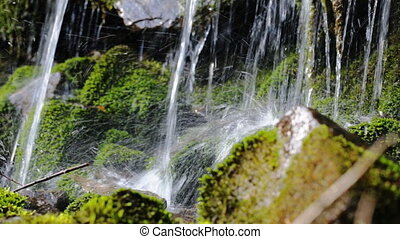 Close up of spring water as it falls and dribbles on green...