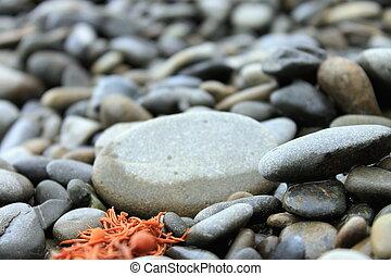 Close up of stony beach