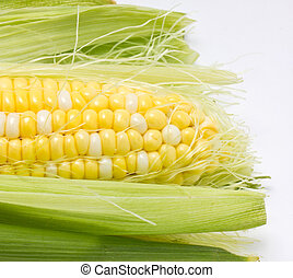 Close up of sweetcorn.