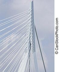 Close up of the Erasmus bridge
