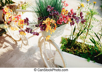 Close-up of the front basket of decorative bike with wildflowers and herbs on a white background