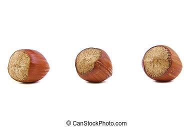 Close-up of three hazelnuts