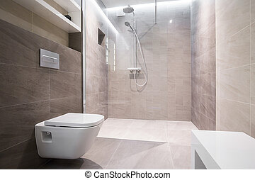 Close-up of toilet - Close-up of white toilet in modern...