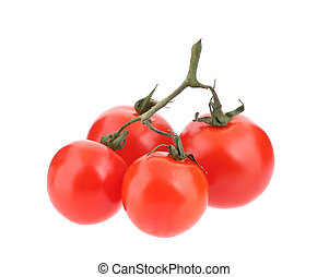 Close up of tomatoes branch.
