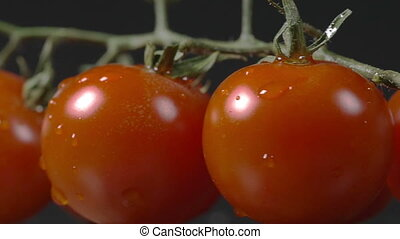 Close-up of tomatoes rotating