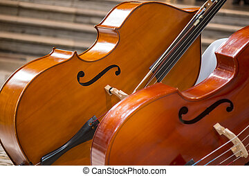 Close-up of two cello. violoncello.