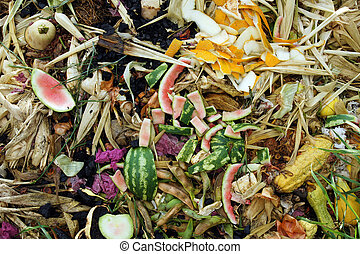 Vegetable Compost Pile