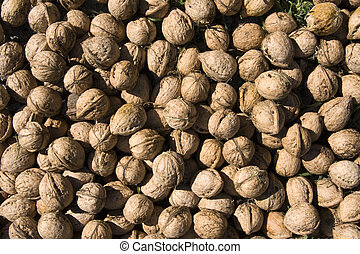 Close up of walnuts pile