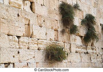 Close up of Western wall. Jerusalem. Israel.