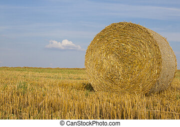Close-up of wheat straw bale