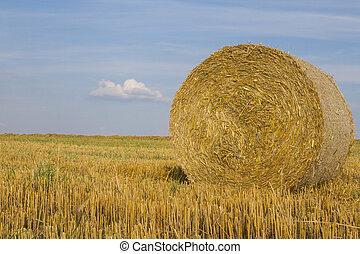 Close-up of wheat straw bale