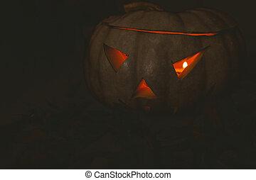 white jack o lantern glowing in darkroom during Halloween - ...