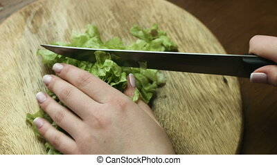 Close up of woman`s hands slicing green tasty lettuce for a dietetic vegetable salad.