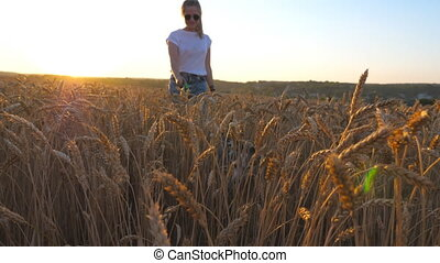 Close up of young girl in sunglasses going with her dog across spikelets at meadow. Cute siberian husky pulling the leash during walking on golden wheat field at sunset. Sunlight at background