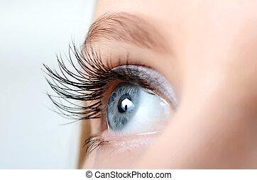 close-up, olho, supercílios, longo, femininas