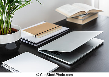 Close-up on black desk with plant, books and laptop in modern freelancer's interior. Real photo
