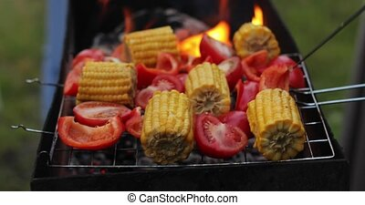 Close up on vegetable kebabs cooking on a bbq - Close up on...