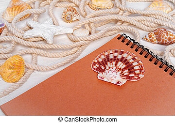 Close up photo of brown notepad with sea shells on wooden planks closeup