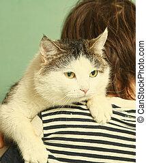 photo of tom cat on boys shoulder