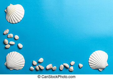 Close up photo of white shells and stones