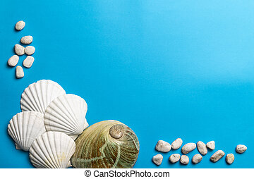 Close up photo of white shells, stones and abalone shell
