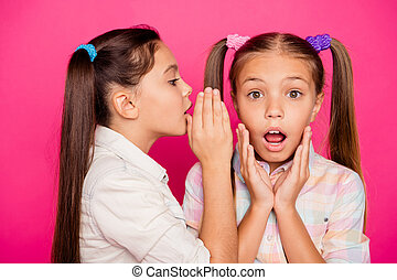 Close up photo two small little age girls tell talk speak in ear novelty about school homework pupils wearing casual jeans denim checkered plaid shirts isolated rose vivid vibrant bright background