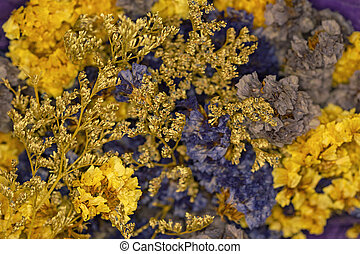 Close-up photos of yellow and purple dried flowers soft focus