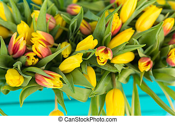 Close-up picture of tulips on blue background