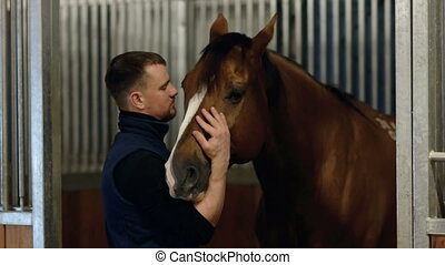 Close up portrait of a man feeding and caressing a horse. Young guy playing with brown horse in a stabled. Care and love for the animals.