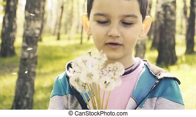 Close-up portrait of child with dandelion on sunny-green ...