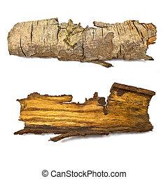 close-up, registro, madeira, isolado, textura, toco,...