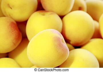 Ripe fruits of Ume