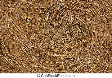 Close up roll of haystack, swirl pattern.