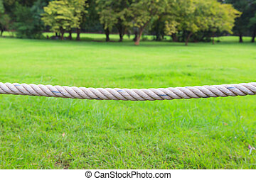 Close up rope in a park