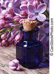 close-up, sering, essentie, aromatisch, tafel, bloemen