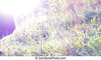 Close up shot of a beautiful young woman's leg walking in grass.