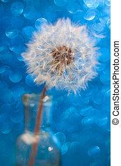 Close up shot of a dandelion