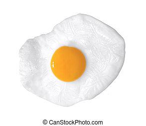 close up shot of a fried egg