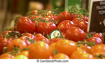 Close up shot of a vine tomatoes - Close up shot of a vine...