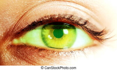 close-up shot of an eye looking around