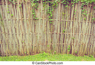 close up shot of bamboo fence.