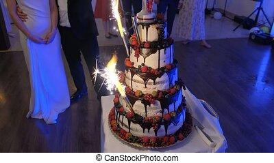 Close-up shot of Beautiful appetizing wedding cake.