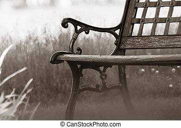Close up shot of bench by the lake