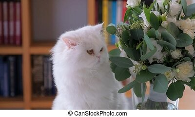 Close-up shot of Cat is sniffing and rubbing its nose against the flower bouquet.