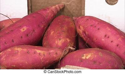 Close up shot of fresh red sweet potatoes