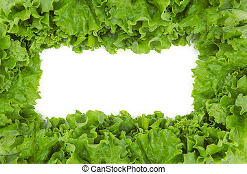 Close up of lettuce in frame shape, isolated on white background. Concept of healthy lifestyle and dieting
