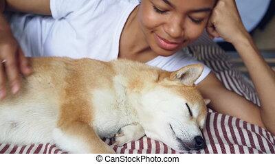 Close-up shot of loving dog owner caressing lovely pet lying...