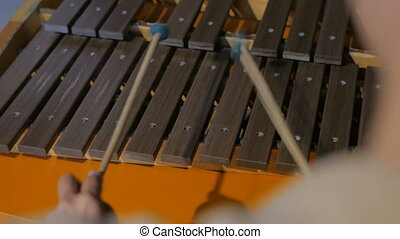 Close-up shot of musician playing xylophone. Art and ...