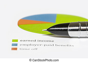 Close up shot of pen tip on a pie chart showing income analysis